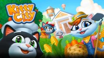 Kitty City